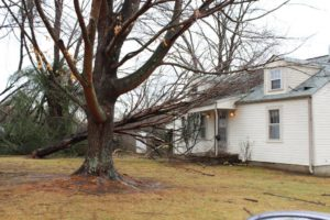Tree falls on a house in Jones Village