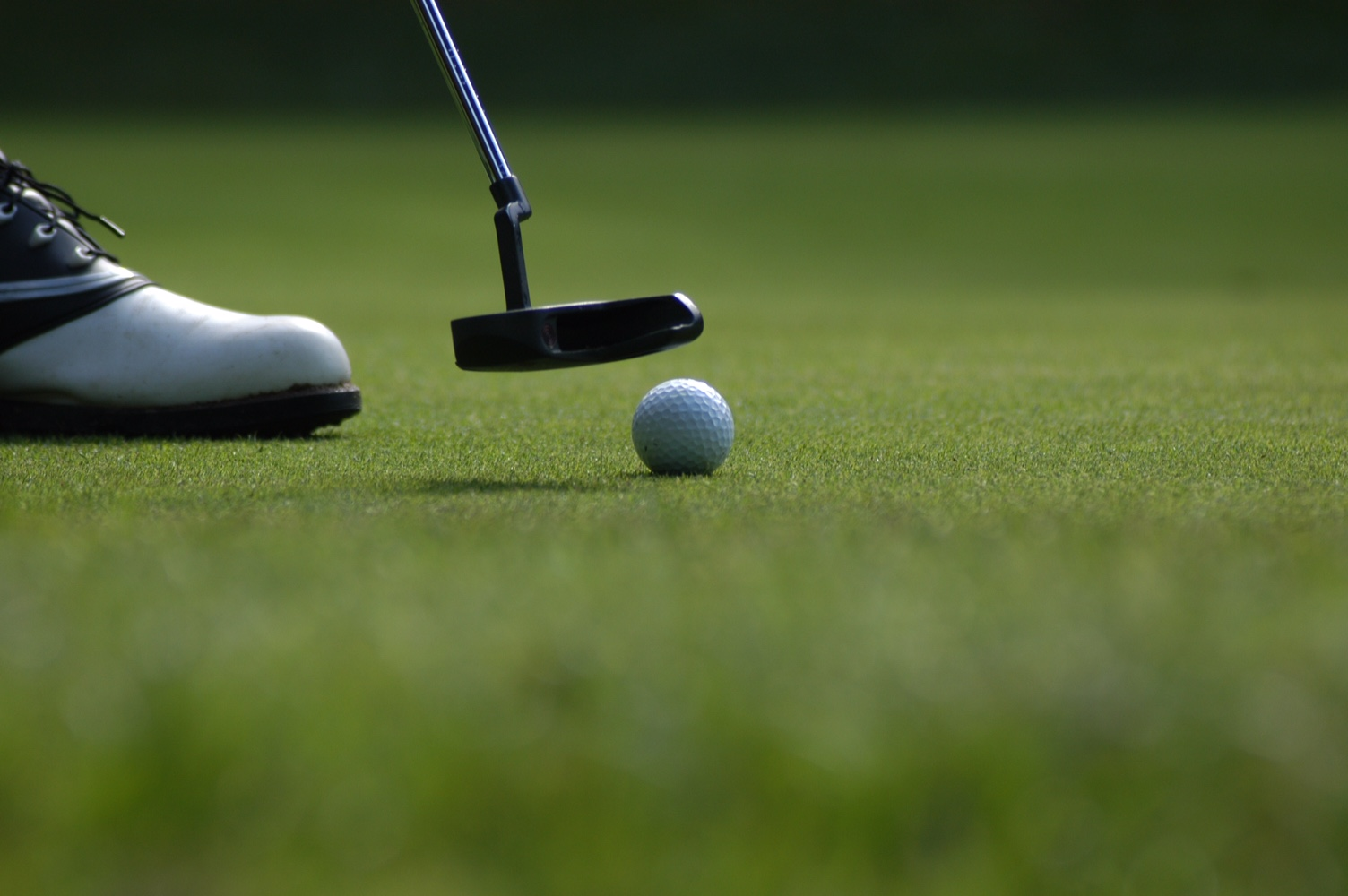 GOLF: Coffee Middle eliminated from postseason