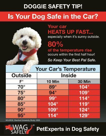 AAA gives tips for high temps